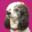 www.magentabaypoodles.com